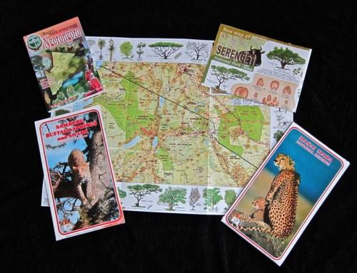 Preparando nuestro Safari
